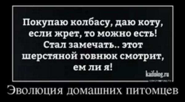 угарный анекдот АН (2)