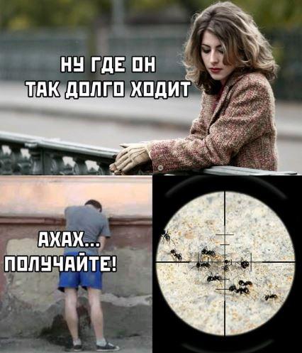 картинки мемы приколы с надписями (18)